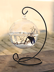 cheap -Mini Aquariums Ornament Glass