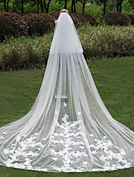 The New 2 Layer Long Lace Veil Bride Wedding Veil Wedding veil Accessories Accessories 3 Meters Luxury