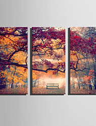 cheap -E-HOME Stretched Canvas Art Autumn Park Scenery Decoration Painting Set Of 3