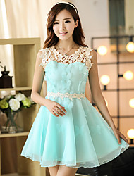 Sign spring and summer organza dress female spring Korean Slim ladies lace skirt