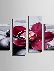 E-HOME Stretched Canvas Art Pebbles And Flowers Decoration Painting Set Of 4