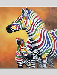 cheap -Oil Paintings  Zebra Style Canvas Material With Wooden Stretcher Ready To Hang Size60*60CM and 70*70CM .