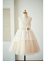 cheap -A-Line Knee Length Flower Girl Dress - Lace Tulle Sleeveless Scoop Neck with Sash / Ribbon Flower by LAN TING Express
