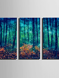 cheap -E-HOME Stretched Canvas Art Fantastic Woods Decoration Painting Set Of 3