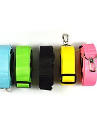 Fashion New Style 2.5cm Pet Running Chain Nylon Waistband Cat Dog Collar Leash Portable Dog Harness