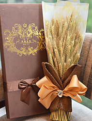 cheap -Barley Harvest Season Gift Box Plant For Mother's Day Gift