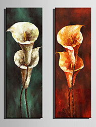 cheap -Mini Size E-HOME Oil painting Modern Calla Lily In Bloom Pure Hand Draw Frameless Decorative Painting Set of 2