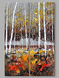 IARTS®Hand Painted Abstract Oil Painting Autumn Birch Woods Landscape Set of 2 with Stretched Frame Handmade For Home Decoration Ready To Hang