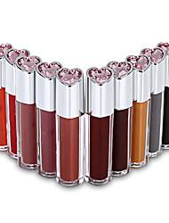 Professional New 10 Full Color Liquid Paint Lip Gloss Lipsticker Pigment Lip Care Beauty Set