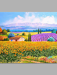 cheap -Hand-Painted Landscape Horizontal, Artistic Canvas Oil Painting Home Decoration One Panel