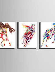 Mini Size E-HOME Oil painting Modern Abstract Multicolored Horse Pure Hand Draw Frameless Decorative Painting Set of 3