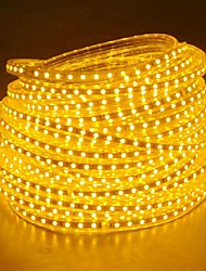 cheap -20M  220V Higt Bright LED Light Strip Flexible 5050 1200SMD Three Crystal Waterproof Light Bar Garden Lights with EU Power Plug