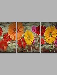 abordables -panoramique horizontal floral / botanique peint à la main, nature artistique inspiré rustique anniversaire moderne