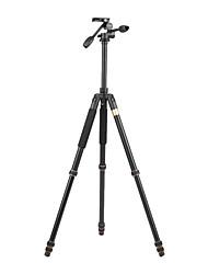 abordables -Aleación de Aluminio 66.5 4.0 Secciones Nikon Sony Canon Trípode