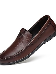 Men's Shoes Real Leather Cowhide Nappa Leather Spring Fall Moccasin Driving Shoes Comfort Loafers & Slip-Ons For Casual Office & Career