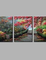 Hand-Painted Leisure Horizontal Panoramic,Artistic Nature Inspired Rustic Birthday Modern/Contemporary Office/Business Cool Christmas New