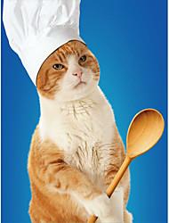 Недорогие -Кошка Шляпы, колпаки, банданы Одежда для собак Молодежный стиль Вышивка Белый Костюм Для домашних животных