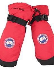 preiswerte -Handschuhe fürs Skifahren Unisex Handschuhe warm halten Wasserdicht Windundurchlässig beflockt Skifahren Winter