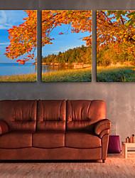 cheap -Canvas Print Modern, Three Panels Canvas Vertical Print Wall Decor Home Decoration
