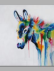 baratos -Pintura a Óleo Pintados à mão - Animais Modern Tela de pintura