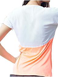baratos -Mulheres Com Transparência / Patchwork Camiseta de Corrida - Branco, Preto, Laranja Esportes Elastano Blusas Manga Curta Roupas Esportivas