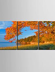 Недорогие -Холст для печати Modern, 3 панели холст Вертикальная С картинкой Декор стены Украшение дома