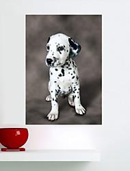 Недорогие -Животные Наклейки Простые наклейки Карта стены стикеры Наклейки для животных Декоративные наклейки на стены, Винил Украшение дома