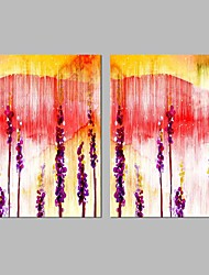 cheap -Stretched Canvas Prints Comtemporary, Two Panels Canvas Horizontal Panoramic Print Wall Decor Home Decoration
