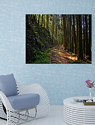 Недорогие -Наклейка на стену Декоративные наклейки на стены Напольные наклейки - 3D наклейки Пейзаж История Положение регулируется