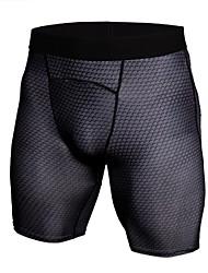 Недорогие -Муж. Облегающие шорты для бега - Черный, Синий Виды спорта Мода, камуфляж Спандекс Шорты Спортивная одежда Легкие, Быстровысыхающий,