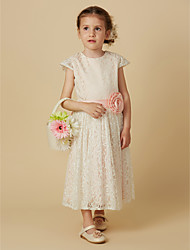 cheap -Sheath / Column Tea Length Flower Girl Dress - Lace Short Sleeve Jewel Neck with Sash / Ribbon / Flower by LAN TING BRIDE®