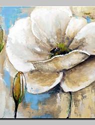 preiswerte -Hang-Ölgemälde Handgemalte - Abstrakt Blumenmuster / Botanisch Modern Segeltuch