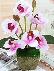Недорогие -Искусственные Цветы 1pcs Филиал Пластик Pастений Орхидеи Букеты на стол