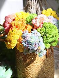 economico -Fiori Artificiali 1 Ramo Semplici / Stile Pastorale Piante succulente Fiori da tavolo