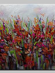 abordables -Peinture à l'huile Hang-peint Peint à la main - Abstrait A fleurs / Botanique Moderne Toile