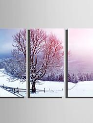 Недорогие -С картинкой Отпечатки на холсте - Пейзаж Зима Modern