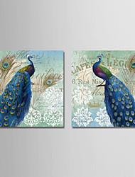Недорогие -С картинкой Отпечатки на холсте - Животные / Урожай Theme Modern