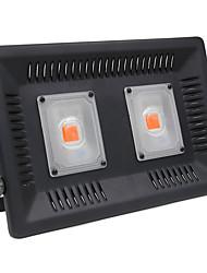 hesapli -ZDM® 1pc 100 W 4000-4500 lm 2 LED Boncuklar Büyüyen Işık Fikstürü Kırmızı 220 V
