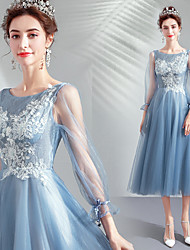 Χαμηλού Κόστους -Cinderella Φορέματα Γυναικεία Στολές Ηρώων Ταινιών Μπλε Φόρεμα Halloween Απόκριες Μασκάρεμα Organza Πούλια Κέντημα