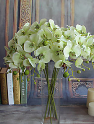abordables -Fleurs artificielles 5 Une succursale Classique Européen Style Simple Orchidées Fleurs éternelles Fleur de Table