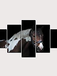 Недорогие -С картинкой Роликовые холсты - Абстракция Животные Классика Modern 5 панелей