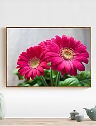 levne -Květiny Wall Decor Netkané textilie / poly uretanové Pastýřský Wall Art, Diamantová malba Dekorace