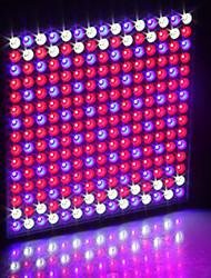 billige -1set 30 W 230 lm 225 LED perler Lett installasjon Nytt Design Trefarget Voksende lysarmatur 85-265 V Hjem / kontor Vegetabilsk drivhus