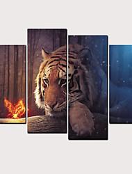 hesapli -Boyama Haddelenmiş Kanvas Tablolar - Soyut Hayvanlar Klasik Modern Dört Panelli