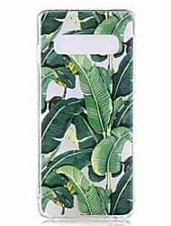 halpa -Etui Käyttötarkoitus Samsung Galaxy Galaxy S10 Plus / Galaxy S10 E Läpinäkyvä / Kuvio Takakuori Puu Pehmeä TPU varten S9 / S9 Plus / S8 Plus