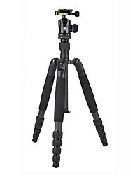 Недорогие -LITBest T1205SK+K10X Назначение 142 cm На открытом воздухе Трипод Записывающая камера