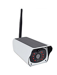 IP Kameraları