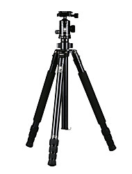 Недорогие -Sirui Sri R2004 Штатив Набор зеркальных фотоаппаратов Профессиональный штатив из алюминиевого сплава фотографии портативный путешествия