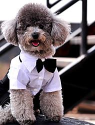 Недорогие -Собаки Инвентарь Одежда для собак Однотонный Белый / Черный Полиэстер Костюм Назначение Лето Свадьба