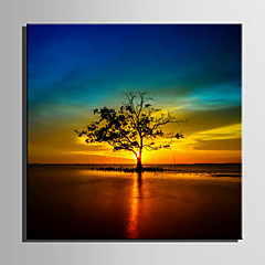 cheap Wall Art-E-HOME® Stretched Canvas Art Tree in The Water in The Setting Sun Decorative Painting One Pcs